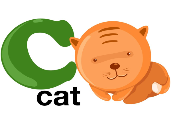 An image of a phonics example of a cat